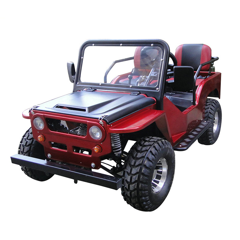 Sunway New Style 110cc/125cc/150cc Go Kart Buggy Mini Jeep