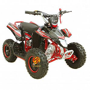 49CC 2-STROKE MINI ATV QUAD BIKE OFF-ROAD BIKE