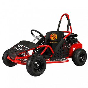 Electric 1000W 48V Mini Buggy Go Kart for Kids