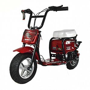 Sunway Best Price Easy Rider Children 350W Electric Mobility Scooter