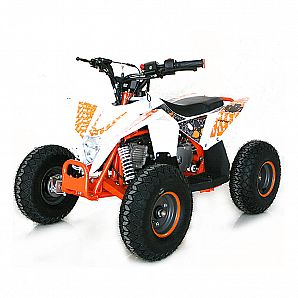 Sunway 110cc ATV 4-Stroke Air Cooled Quad Bike 4x2 for Childern