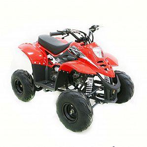 Sunway Mini 110CC ATV Quad Bike ,4-Stroke,1-Cylinder,Air cooled