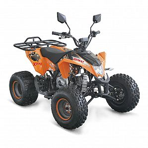 Sunway 50cc Mini ATV Quad Bike 4-Stroke,1-Cylinder,Air Cooled