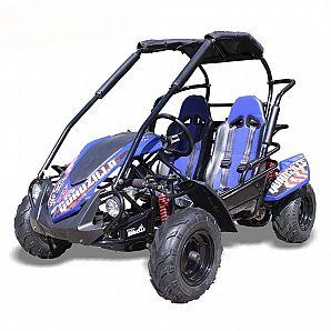 Sunway New 200cc BLAZER CVT Double Seats Go Kart Dune Buggy
