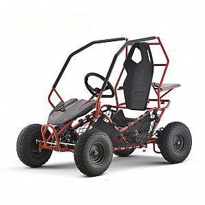 Sunway 2019 500W 36v Kids Electric Go Karts ,Buggy