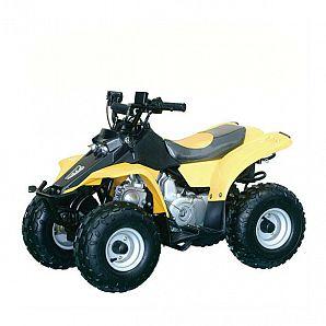 Sunway 110CC Mini ATV Quad Sports for Kids