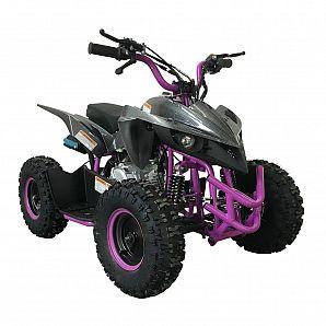 Sunway New Model Mini Quad ATV 60CC 4-Stroke for Kids